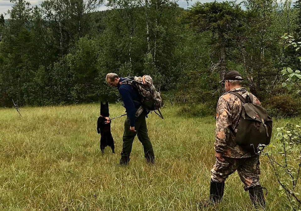 Selbuprøven og jaktprøve